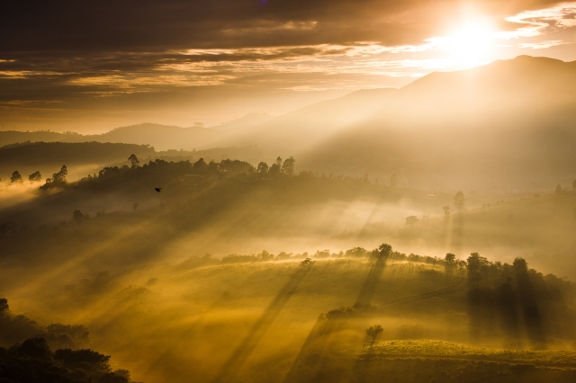 valley_by_ldinami7e-d6xqgi7
